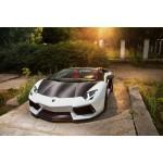 Lamborghini Aventador Carbon Fiber parts
