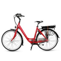 EASYRIDER B2 European popular fashion city electric bike