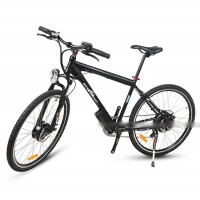 EASYRIDER C14 36V 250W Bafang Hub Motor Cheap Electric Bike For City Roads