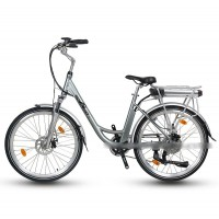 EASYRIDER C5-RR Two wheel Powered City electric bicycle