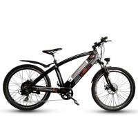 EASYRIDER Q5 500w hub motor hidden battery electric bike