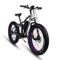 EASYRIDER S29-M Fat tire 8FUN center motor electric bike