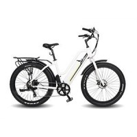 EASYRIDER S50 step-through city electric bike