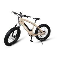 RAMPAGE Q7-6-1 NEW fat tire 1000W mid motor electric bike