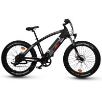 RAMPAGE  Q7 Fat tire 1000W off-road electric bike