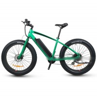RAMPAGE S48 New model e-bike long range 500w fat tire ebike