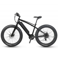 RAMPAGE S52 fat tire gentle style 350w city fat tire electric bike