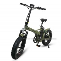 E-Flow SF1 new model electric bikes
