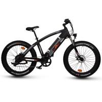 RAMPAGE  Q7 Fat tire 1000W off-road electric bike