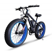 RAMPAGE S19  FAT TYRE ELECTRIC BICYCLE