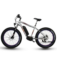 RAMPAGE S34-M 8Fun 250W Max mid-drive torque sensor fat electric bike
