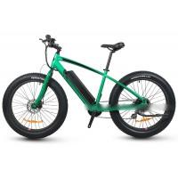 RAMPAGE S48 New model e-bike long range 500w fat tire ebike