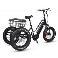 XTRA NRG CARGO TRIKE - N2 750W/1000W  e-trike