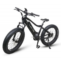 RAMPAGE S30-2 NEW fat tire 1000W mountain electric bike