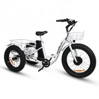 XTRA NRG CARGO TRIKE - N4-F ELECTRIC TRIKE/ELECTRIC TRICYCLE