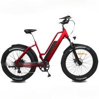 EASYRIDER S50 fashion designed electric bike fat tire model long range ebike