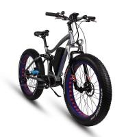 EASYRIDER S29-M Fat tire 8FUN center motor electric bike