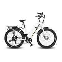 EASYRIDER S50 step-through city electric bike