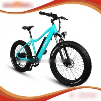 RAMPAGE S47 New model e-bike long range 250w fat tire ebike