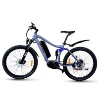 EASYRIDER M1-M MAX Mid Drive Motor Full Suspension Electric Mountain Bike