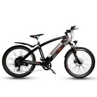 EASYRIDER Q5 500w hub motor hidden battery electric bike