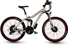 Custom E-Bikes